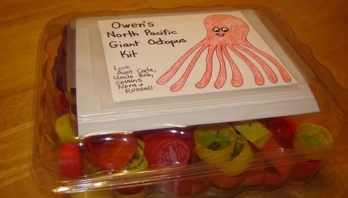 """Plastic cap octopus """"kit"""""""