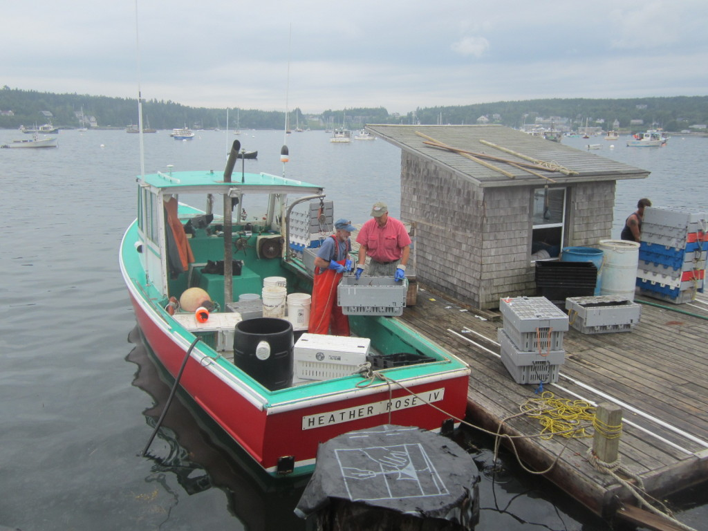 Offloading lobster at Beal's Lobster Pier in Southwest Harbor, Maine