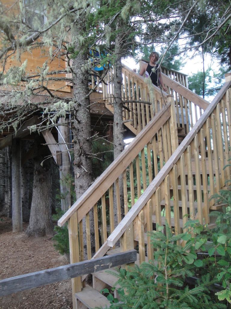 Stairs going up to the treehouse