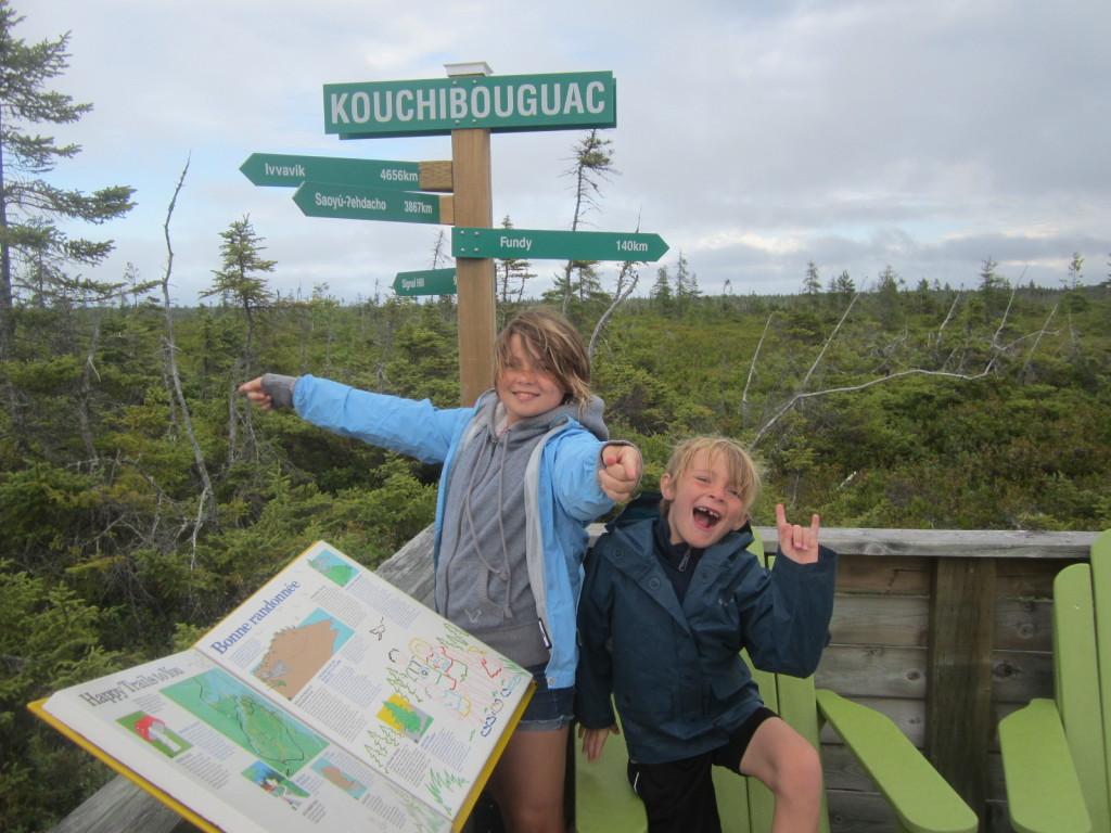 Bog Hike at Kouchibouguac National Park