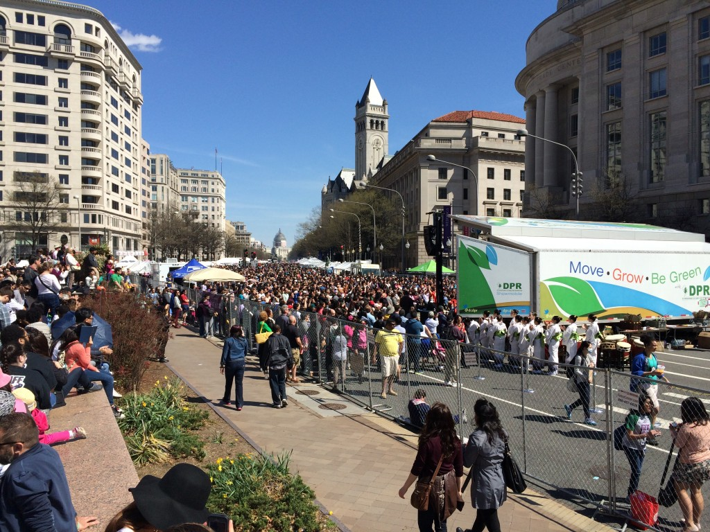 Cherry Blossom festival - view from Pennsylvania Avenue stage towards Capitol Building