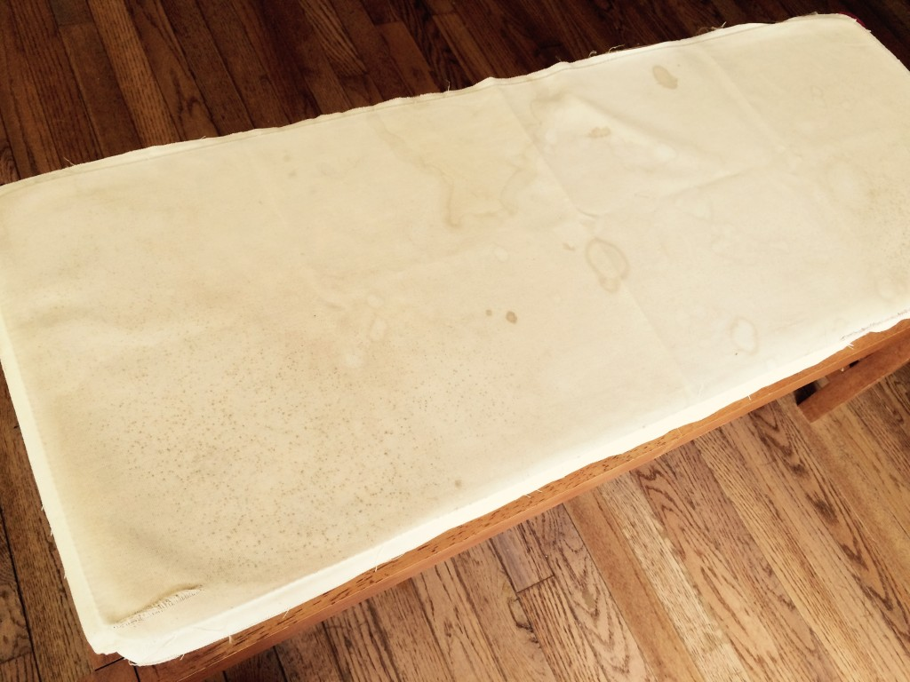 Moldy cover on bench - before re-upholstery job