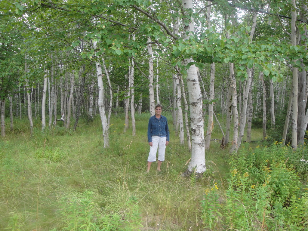 Mom standing in a forest of birch trees in Gander, Newfoundland