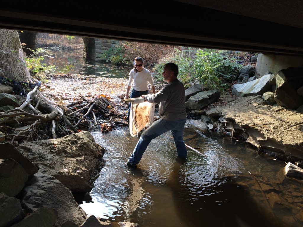Karin and John gather another net of macroinvertebrates
