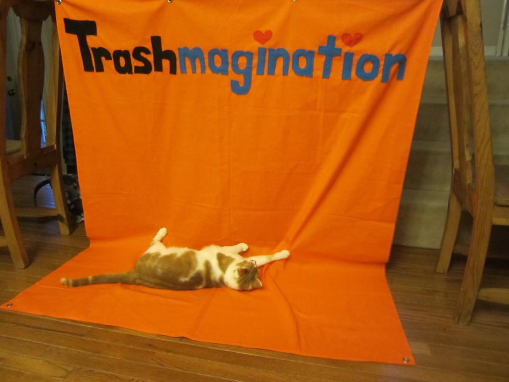 Charles attacks the Trashmagination banner