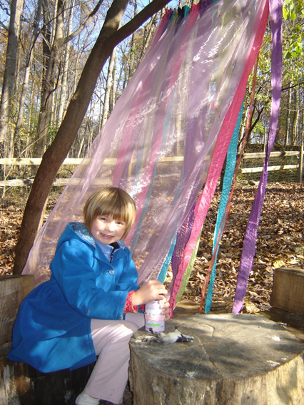 """Magic Curtain"" at Locust Grove Nature Center"
