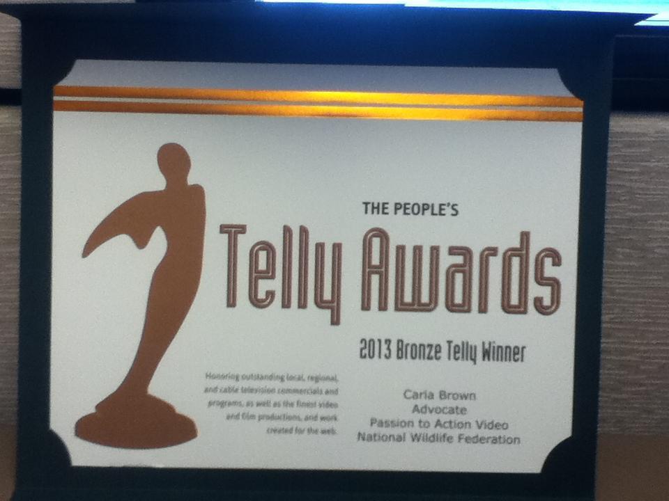 Bronze Telly Award - 2013