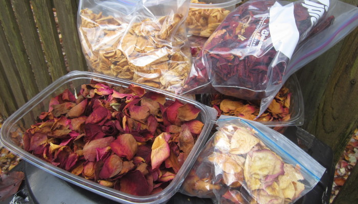 Dried rose petal collection