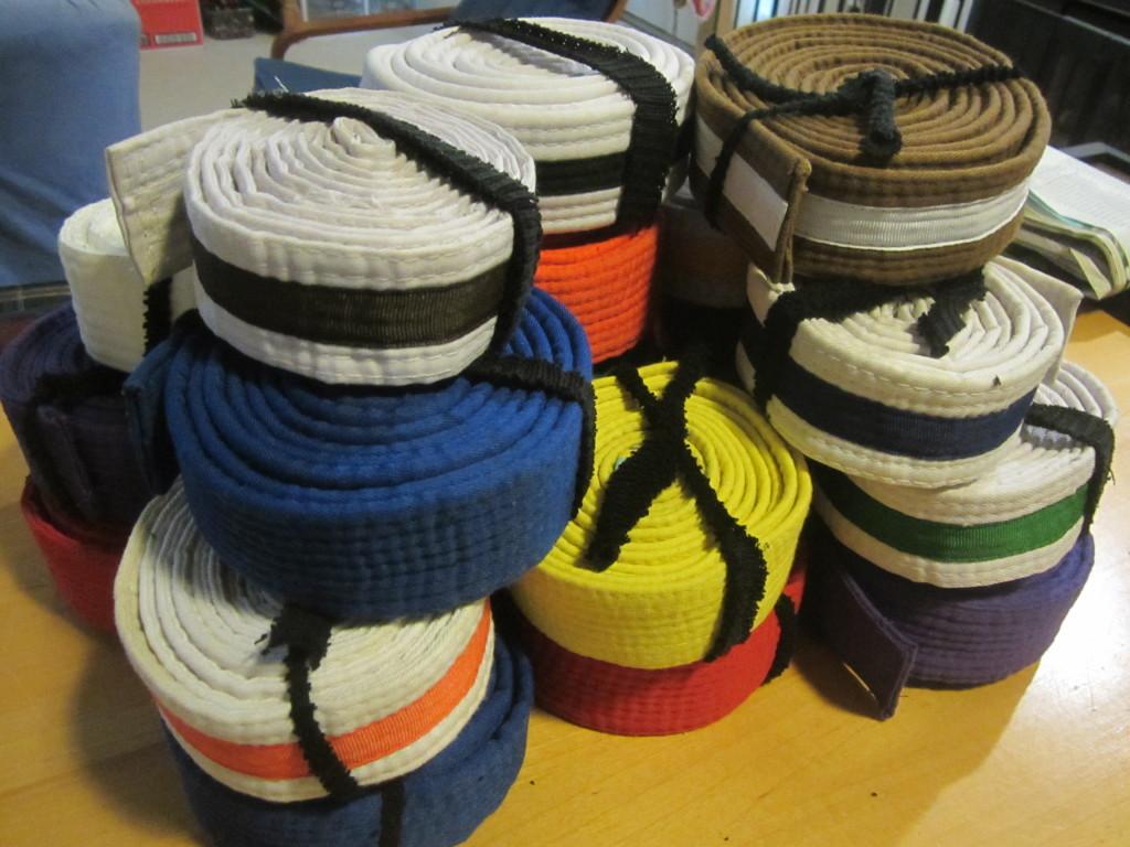 Tae Kwon Do or Karate Belts - for bag handles