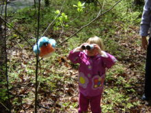A stuffed toy bird tied on a branch for a pretend nature scavenger hunt